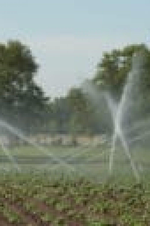 irrigationwater